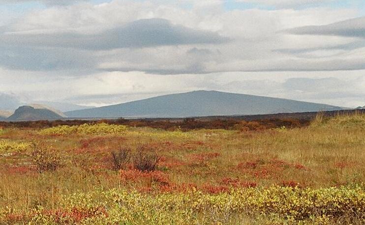 Dyngjan Skjaldbreiður (mynd wikipedia)