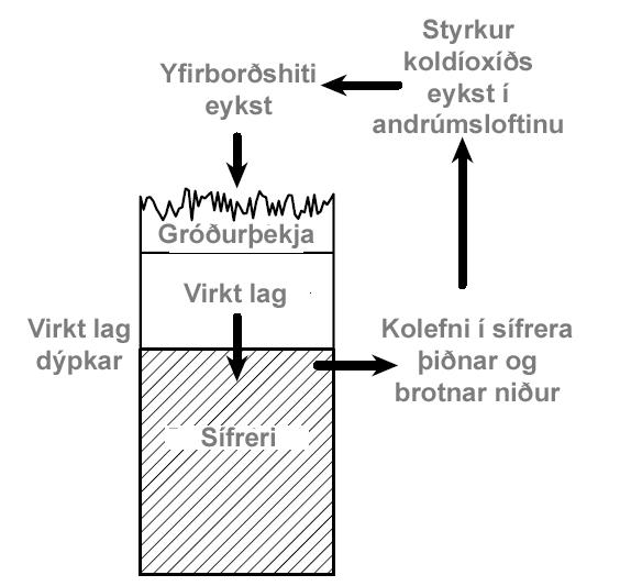 Þýdd skematísk mynd úr grein Schaeffer o.fl. 2011 sem sýnir magnandi svörun við bráðnun sífrera.